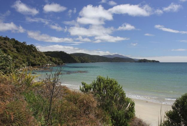 Discover what Stewart Island has to offer.
